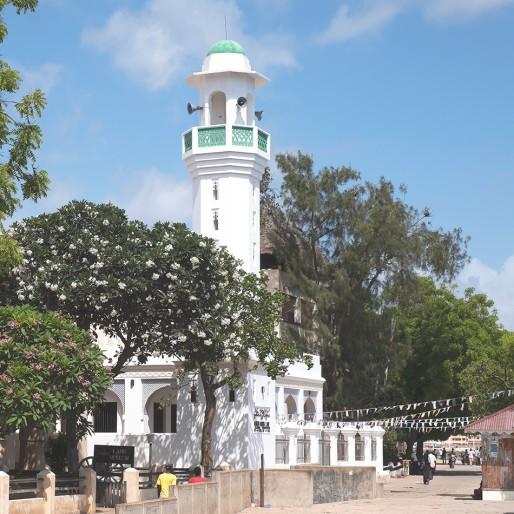 بناء المساجد